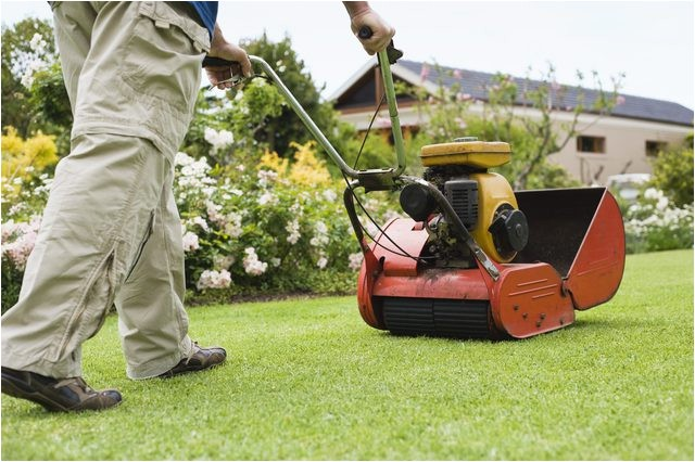 scotts spreader settings for grass seed