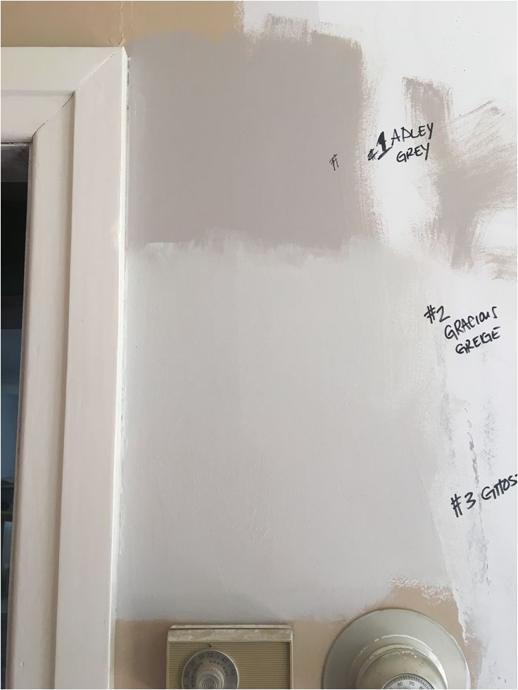 Sherwin Williams Adley Grey I Got 99 Problems but Paint Ain T One Colors We and