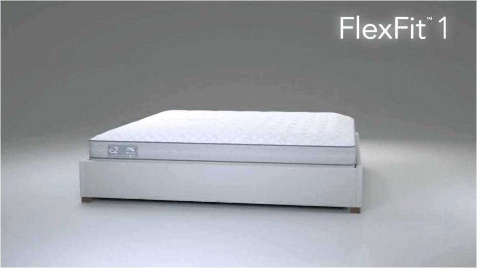 consumer reports sleep number bed pertaining to really encourage
