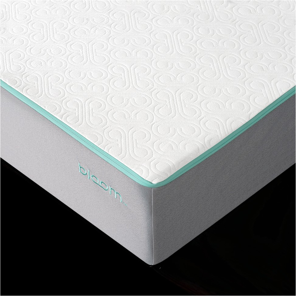 Slumber Cloud Dryline Mattress Protector Canada Bloom Bloom Cloud Mattress Sleep Country Canada