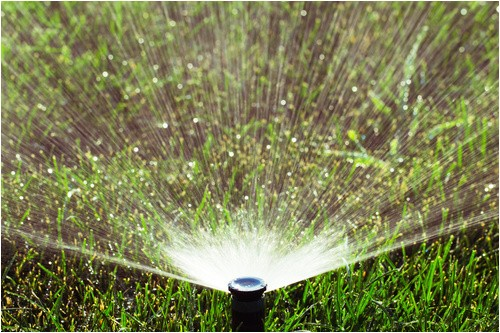 Sprinkler Repair In fort Collins fort Collins Sprinkler Turn On Shut Off Sprinkler Blow Out