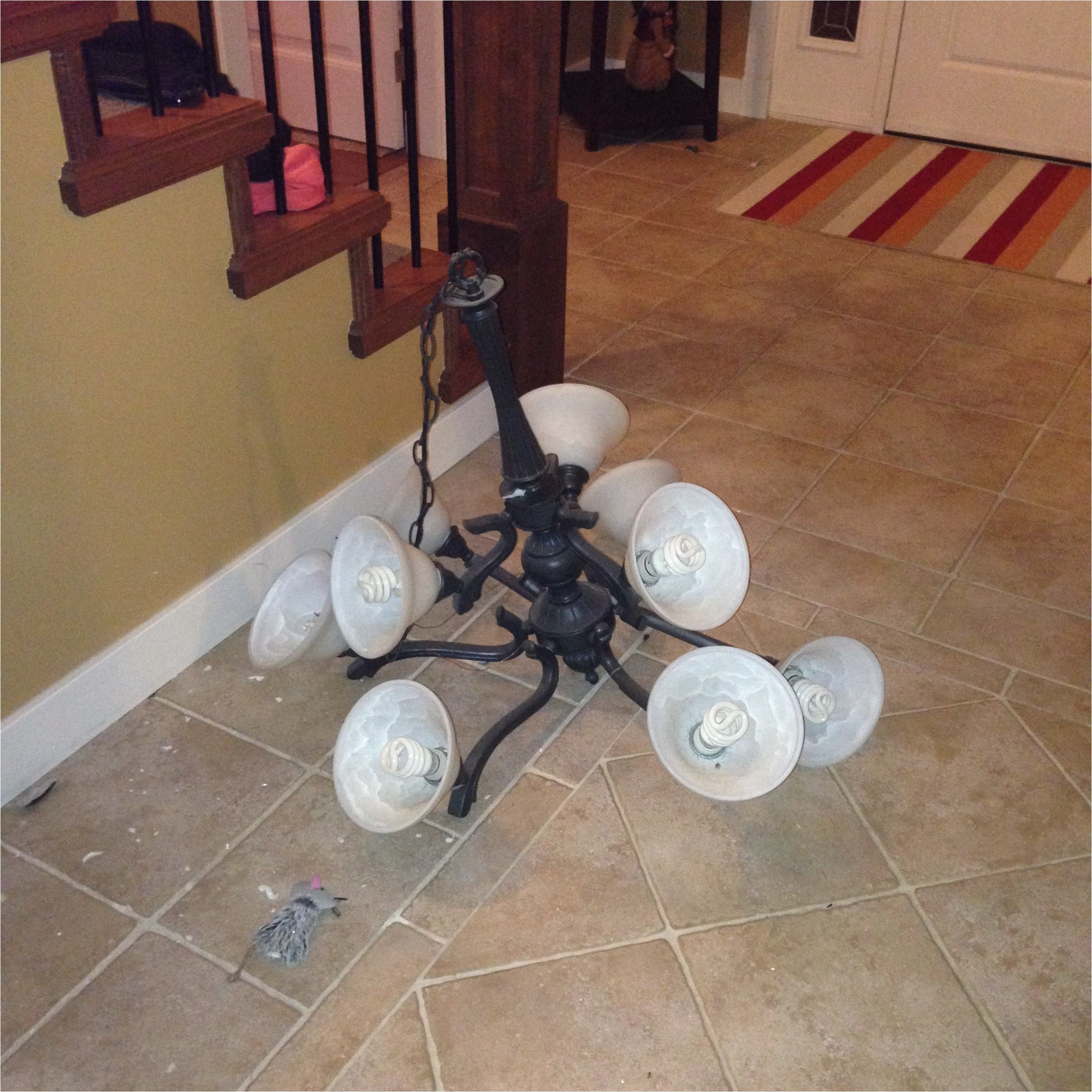 Who Owns Hampton Bay Cabinets top 70 Reviews and Complaints About Hampton Bay Lighting
