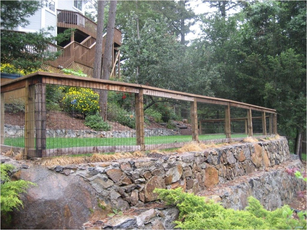 backyard fence surrounded great front yard fence design ideas 26