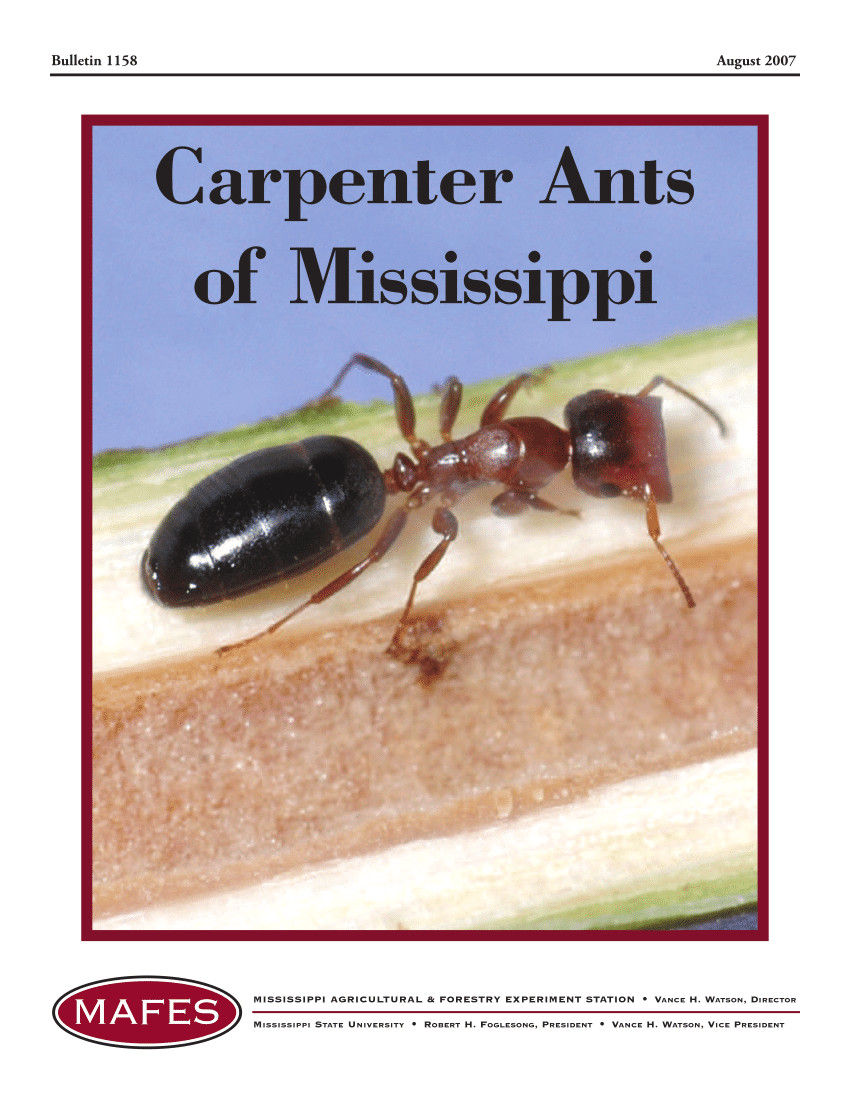 pdf carpenter ants of mississippi