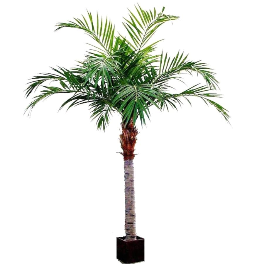 majesty artificial palm tree 350cm