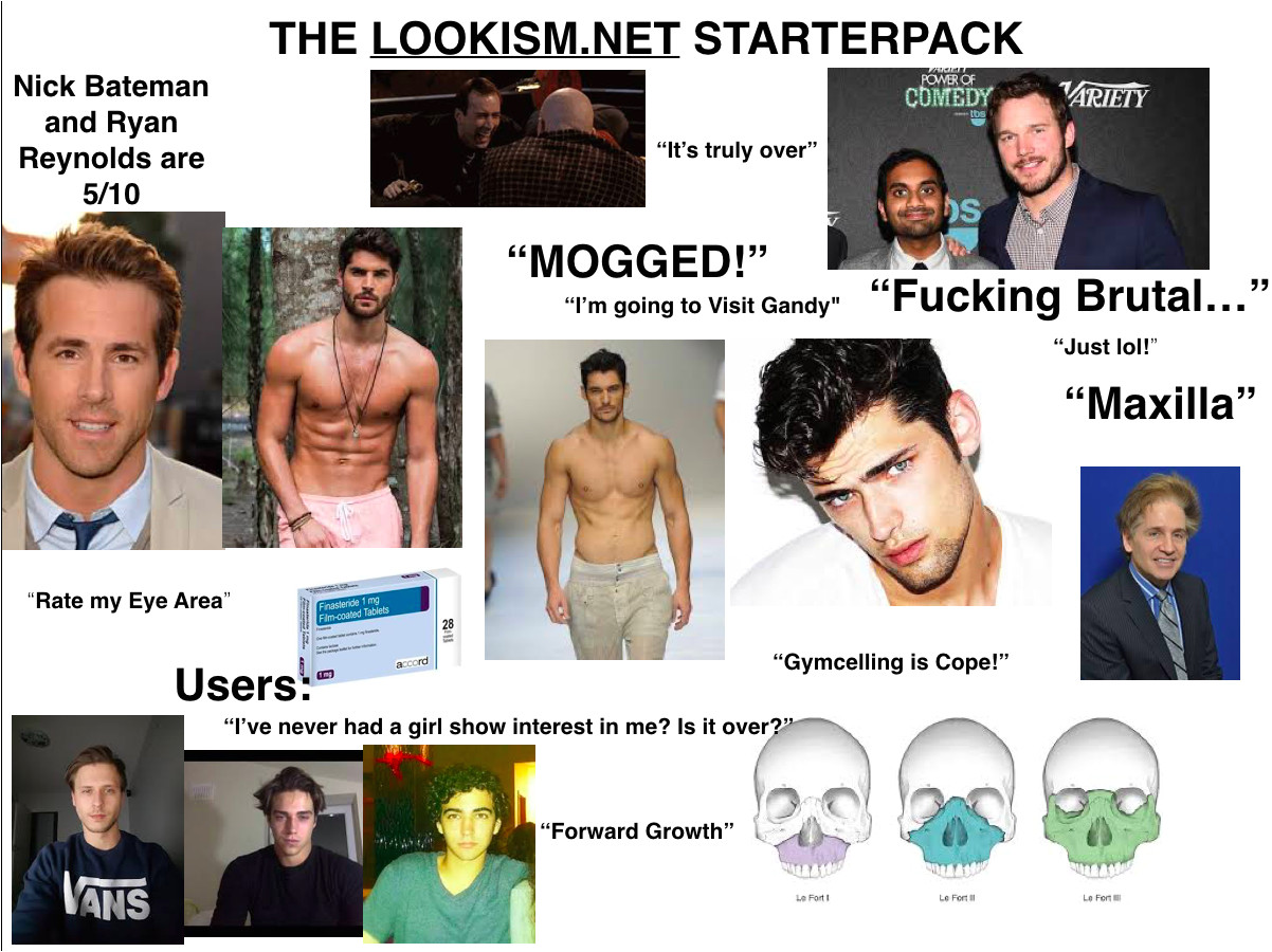 the lookism net starterpack