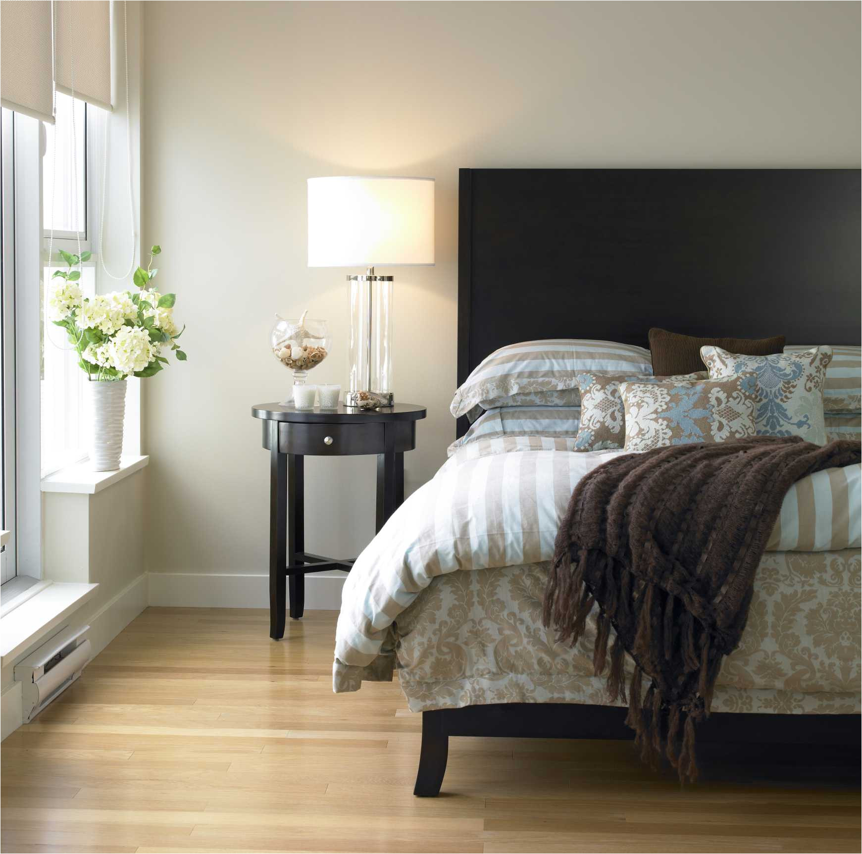 Benjamin Moore Balboa Mist Reviews top Neutral Paint Colors You Should Have In Your Home