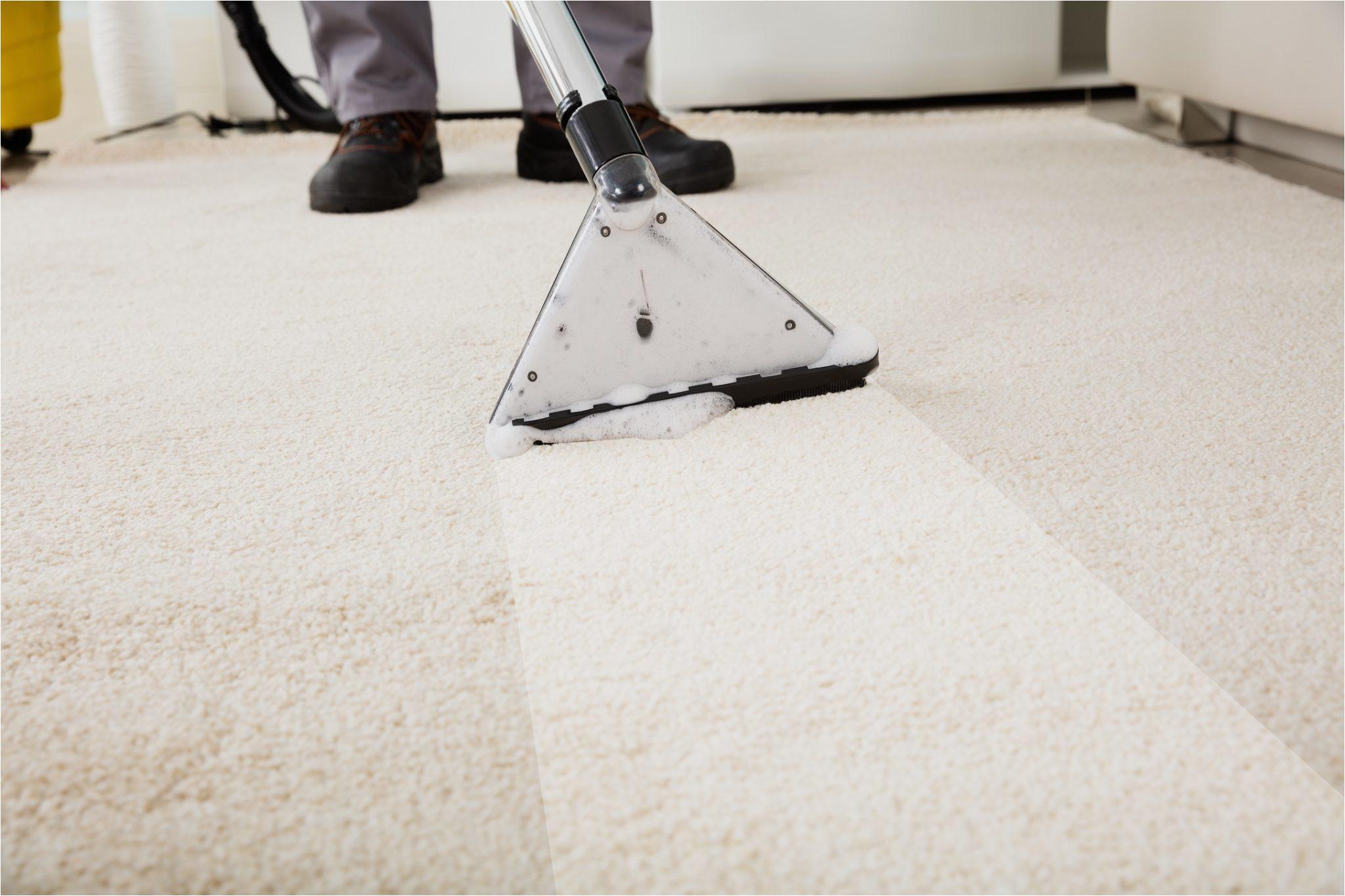 carpet cleaners stafford va elegant carpet cleaning fredericksburg va area free quotes of carpet cleaners stafford va jpg