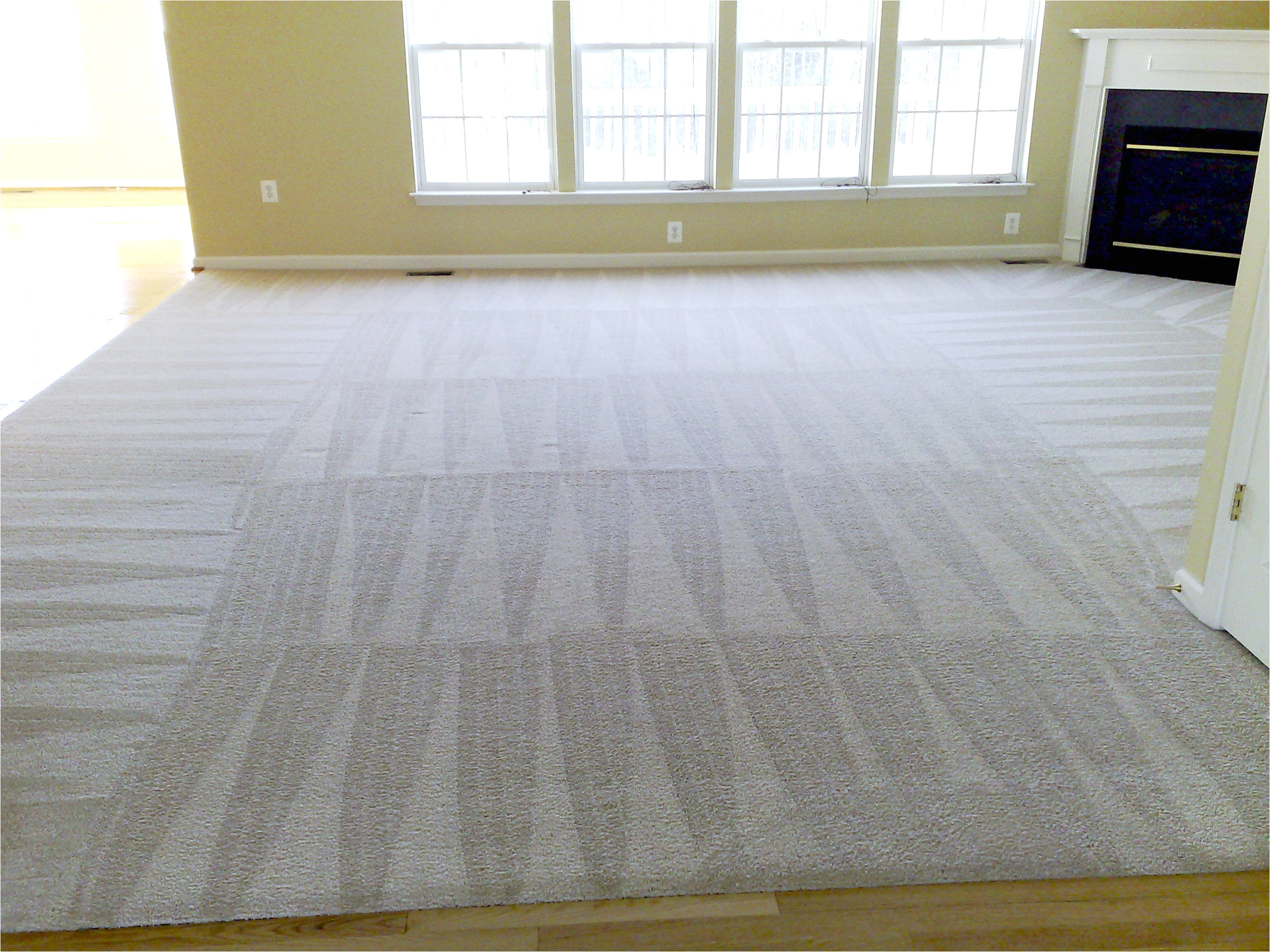 carpet cleaners stafford va fresh superior fabric cleaners fredericksburg carpet cleaners of carpet cleaners stafford va jpg