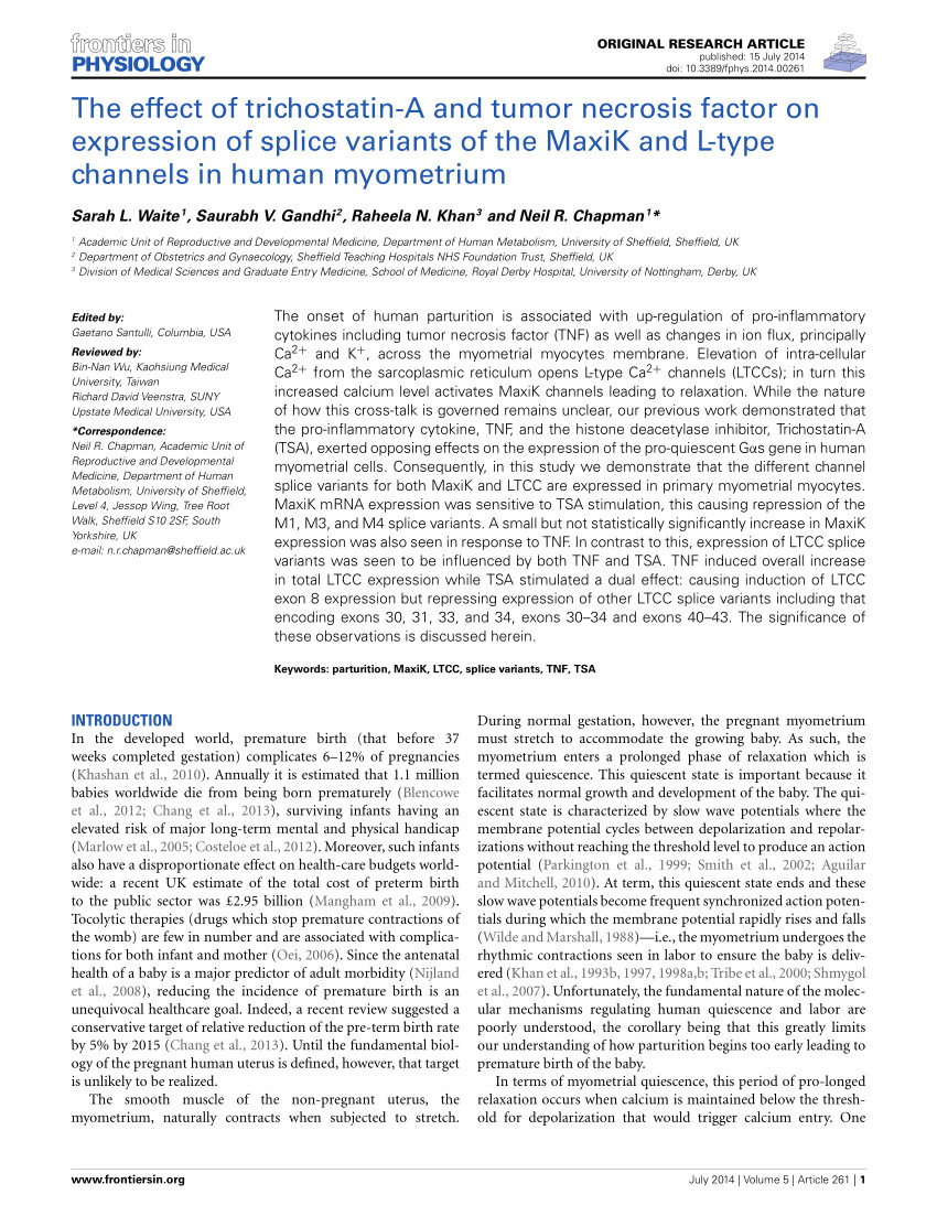 pdf the effect of trichostatin a and tumour necrosis factor on expression of splice variants of the maxik and l type channels in human myometrium