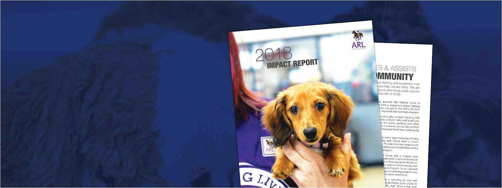 view the arl s 2018 impact report