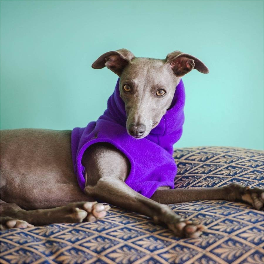 fleecy snood for whippets gifts for pets