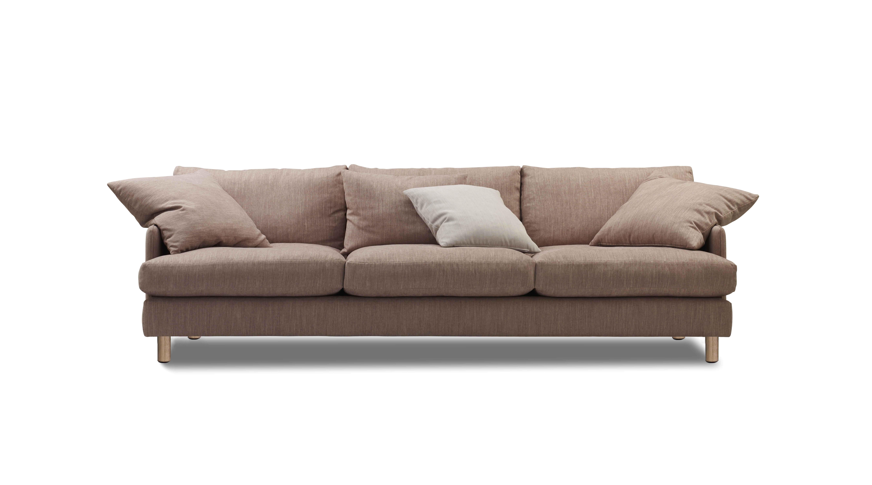 English Roll Arm sofa Tight Back 26 Beautiful English Roll Arm sofa Tight Back Images