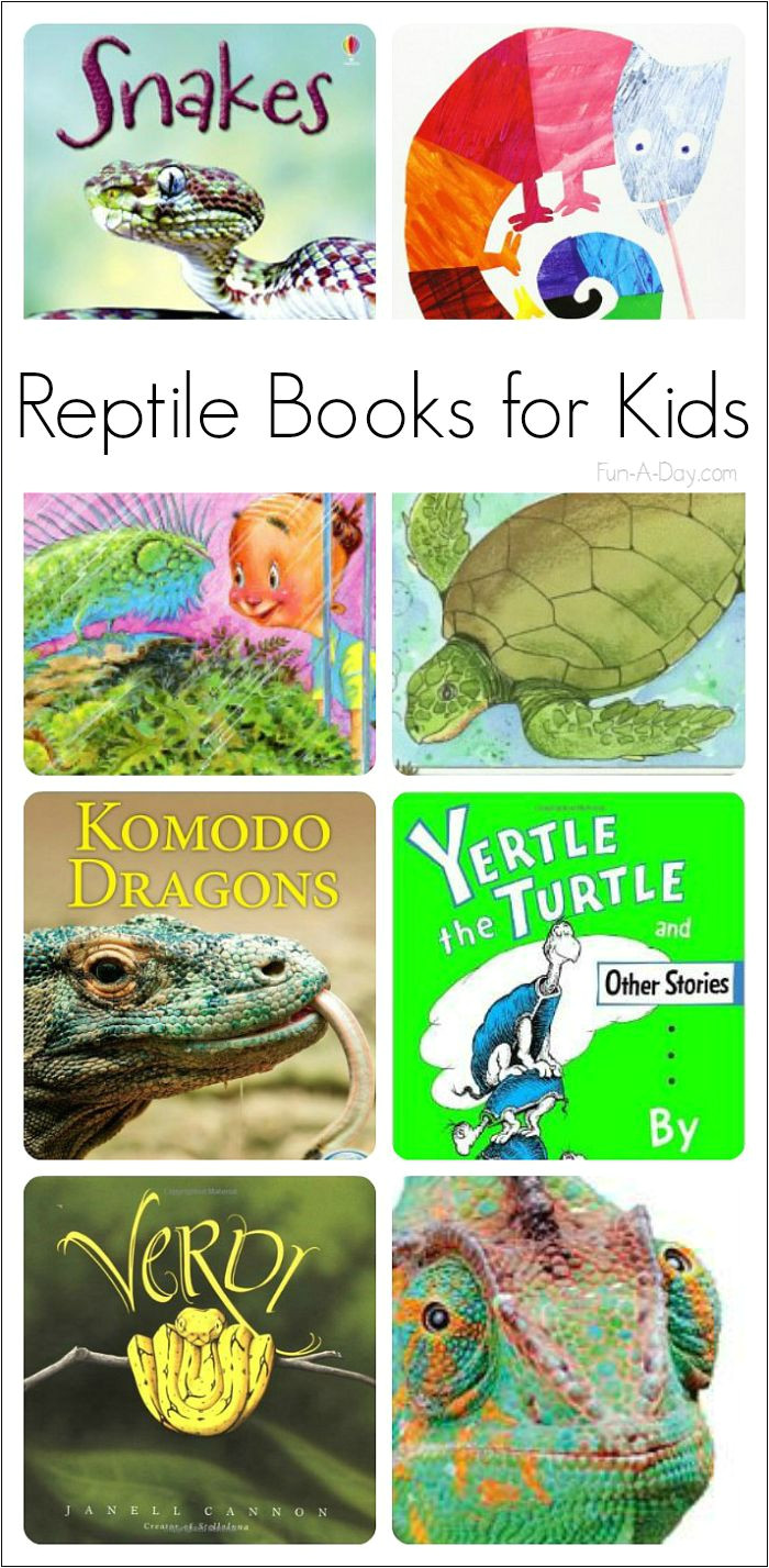 fiction and nonfiction reptile books for preschoolers