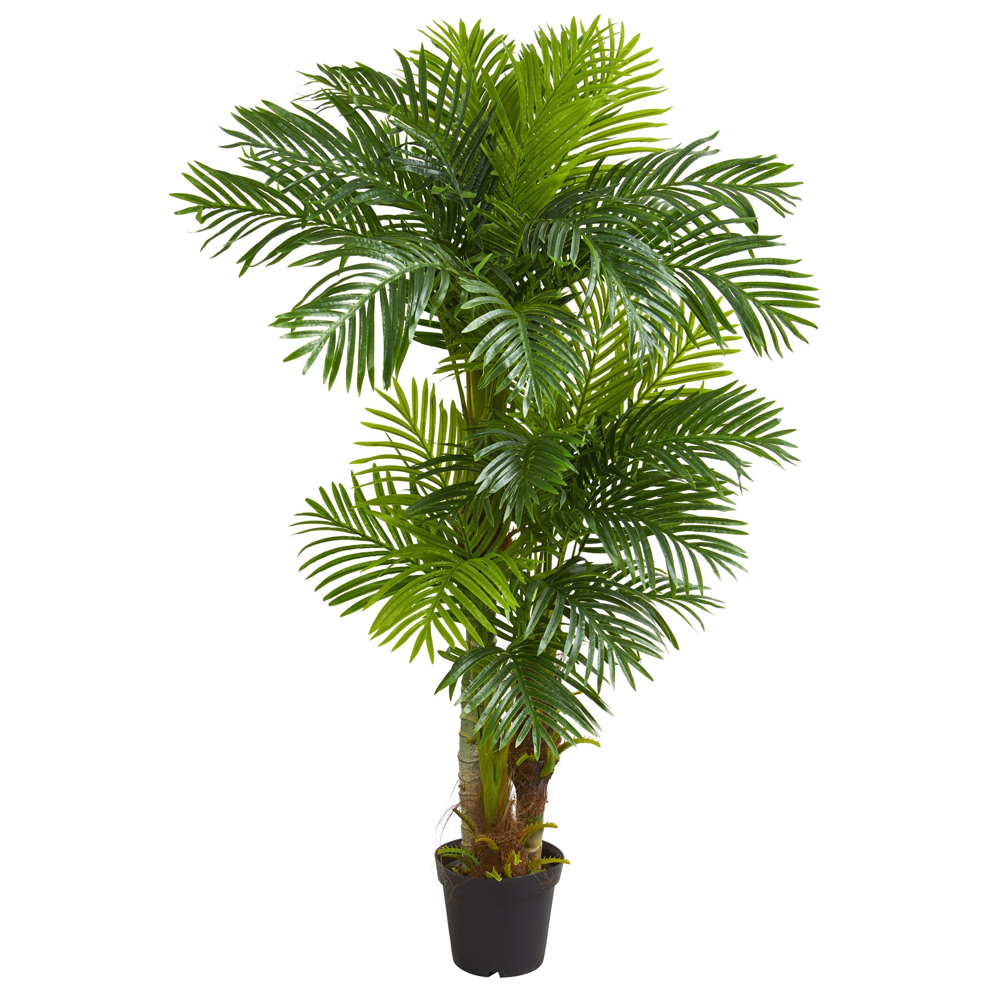 standing at six feet tall this artificial hawaii palm tree will effortlessly fill your home or office with a tropical warmth the lush green leaves that