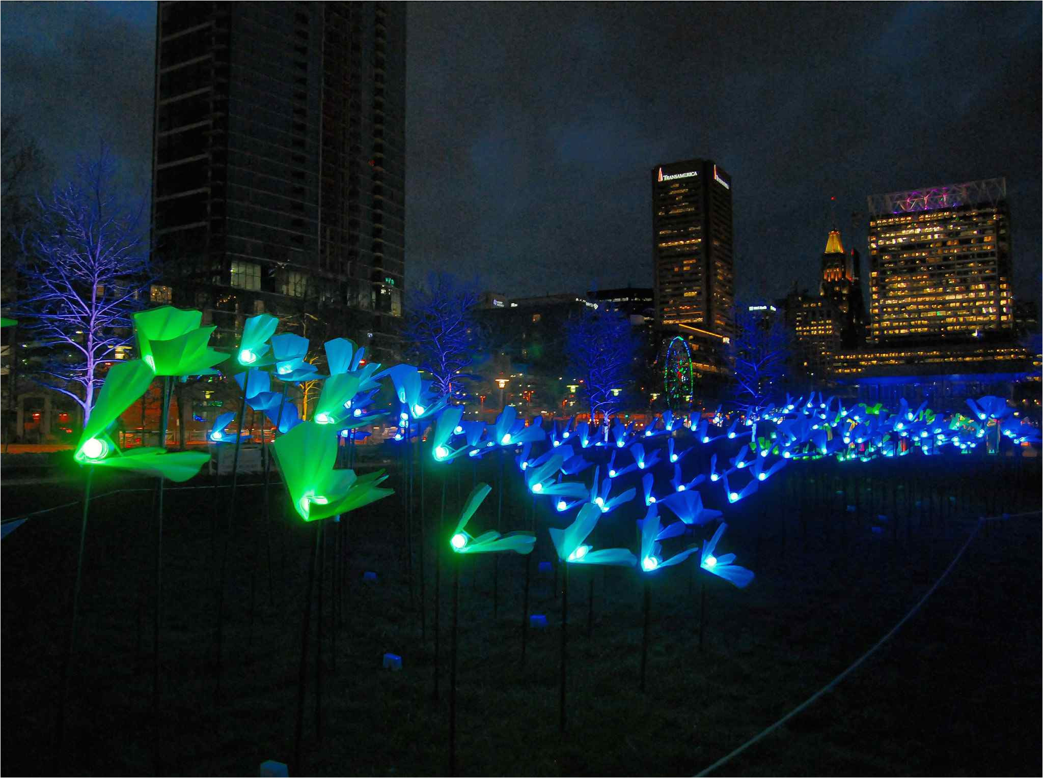 city light festival in baltimore maryland