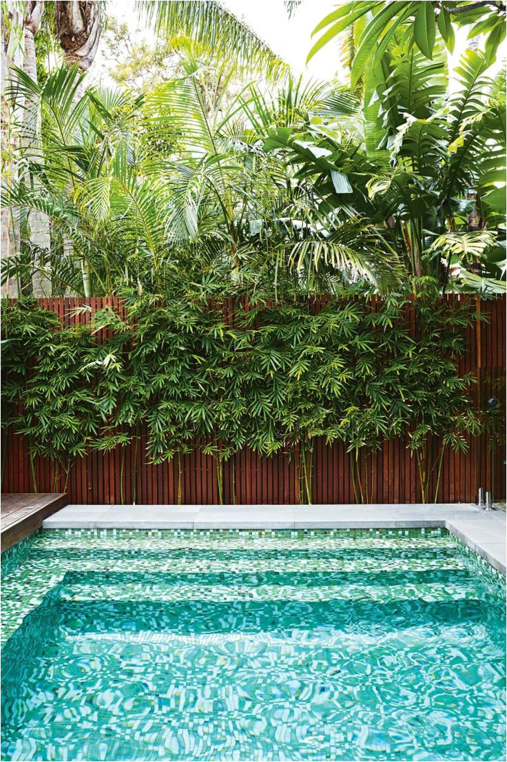 we are the premier pool builders in sydney we can design and build you a new concrete swimming pool from start to finish including council submissions