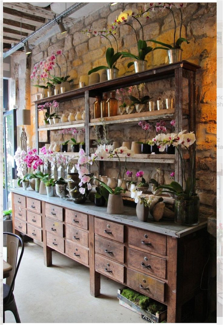 eric chauvin flower shop paris lovely concept for inside a greenhouse shelves counter and drawers