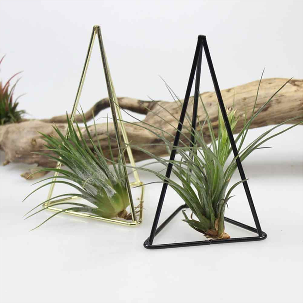 rustic style iron freestanding hanging metal geometrical triangle trihedron shaped tillandsia air plant receptacle flower stand
