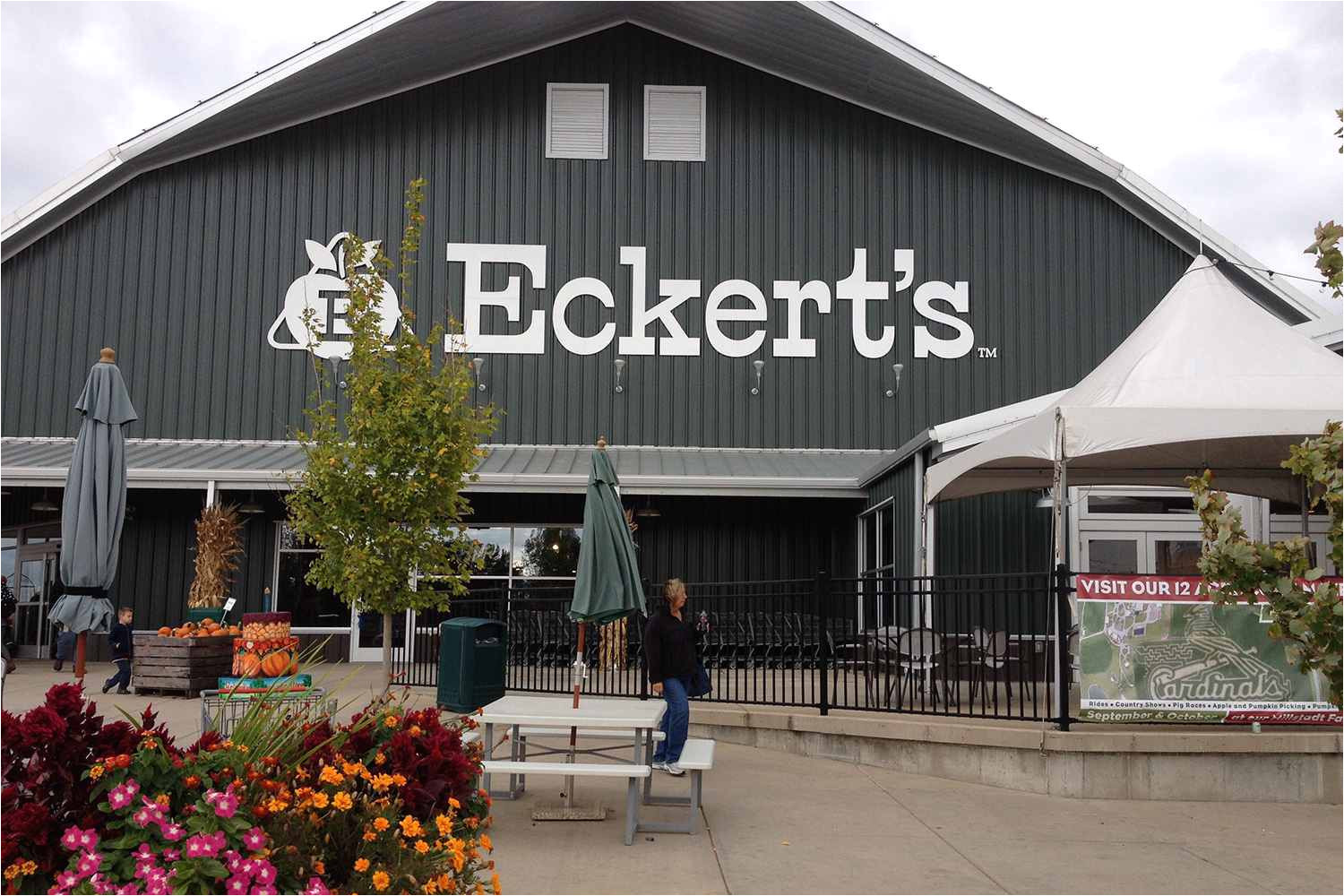apple fest at eckert s orchards