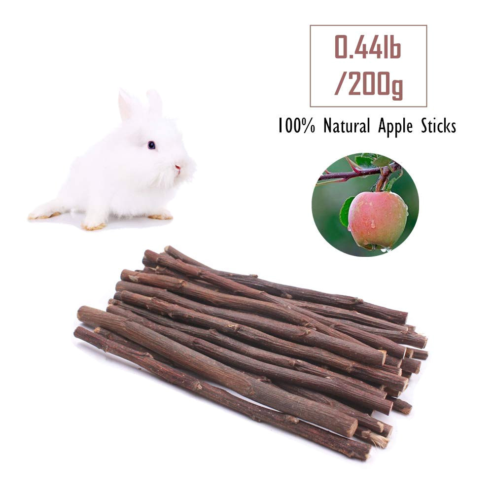 amazon com guinea pig toys chinchilla hamster rat chews toys bunny rabbits gerbil molar wooden pack of 7 pet supplies