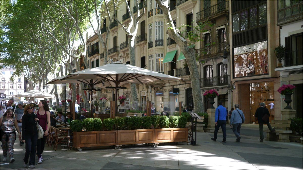 discover the city of palma de mallorca