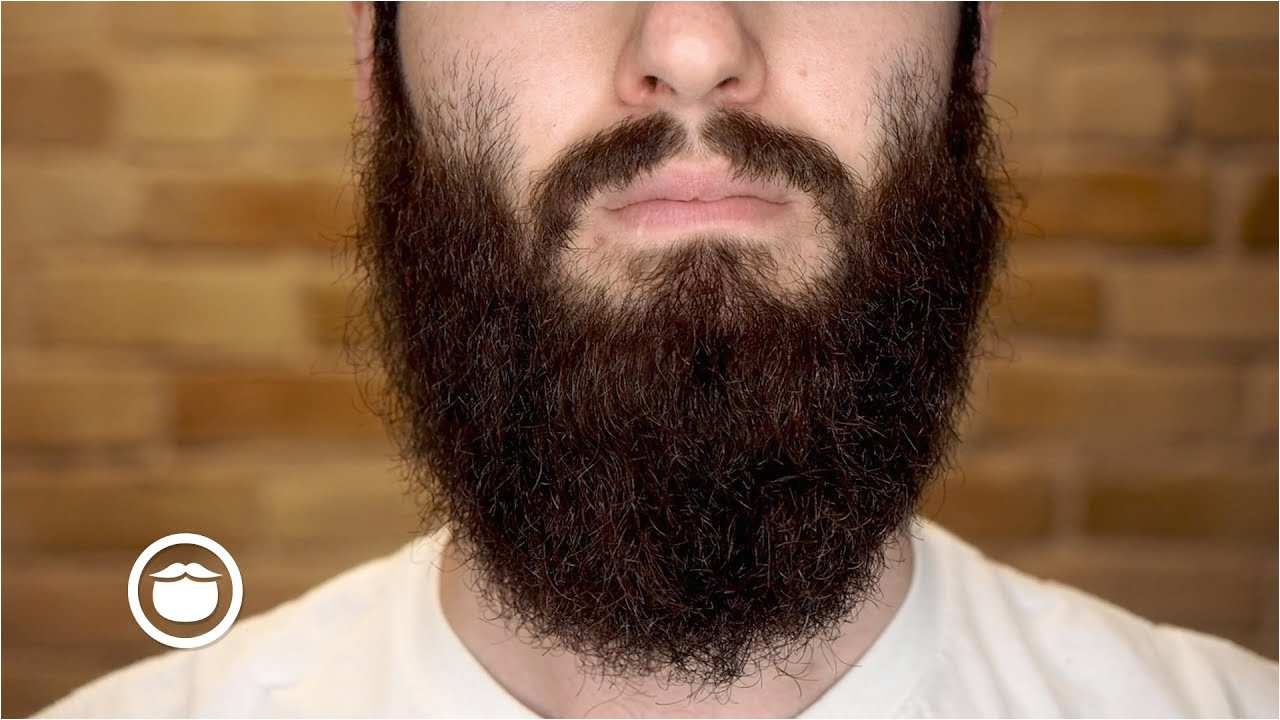 how to straighten a wild curly beard yeard week 21