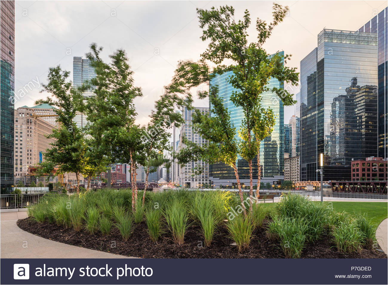landscape architecture at river point tower stock image
