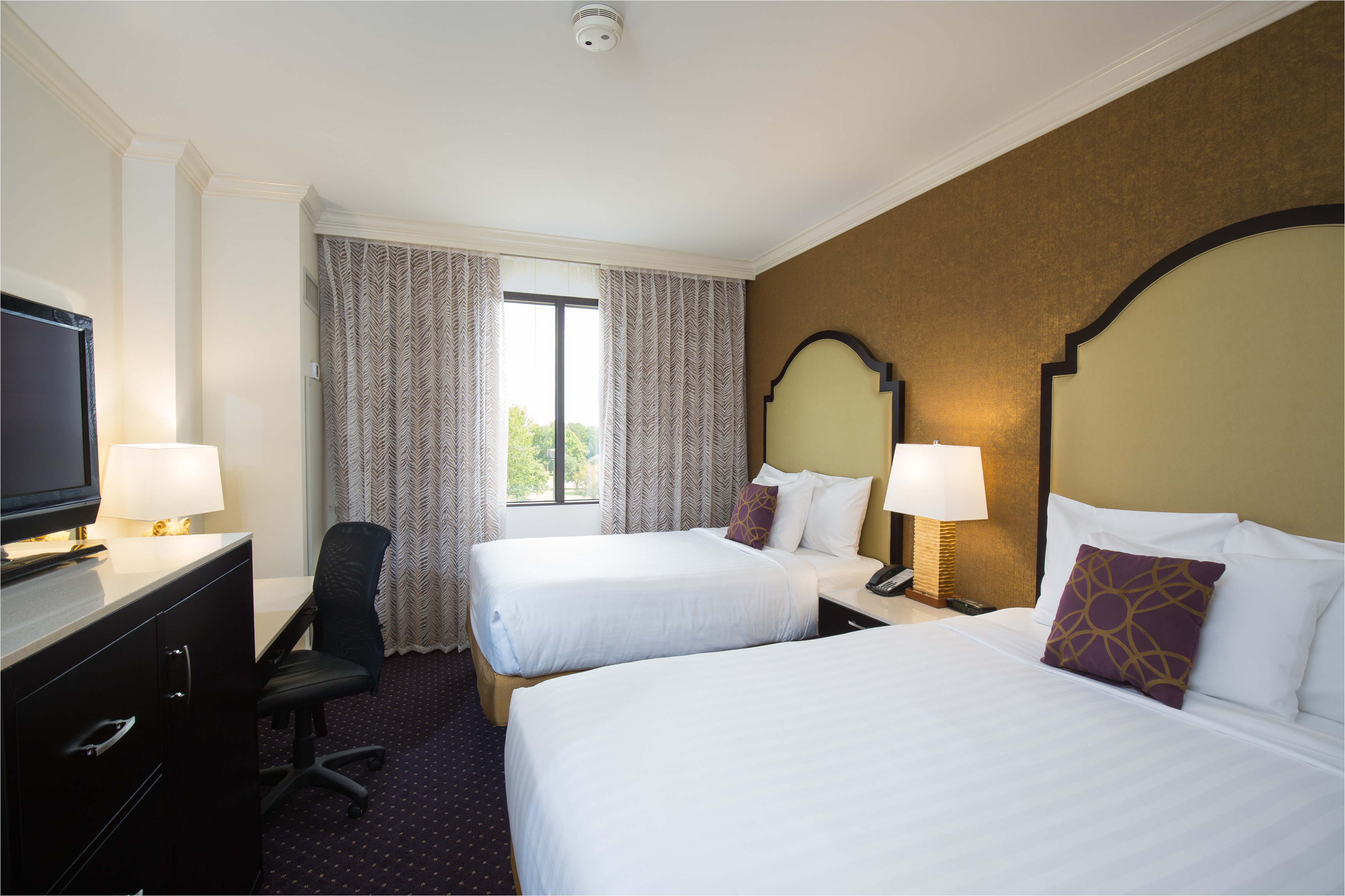 luxury king or double guest suite