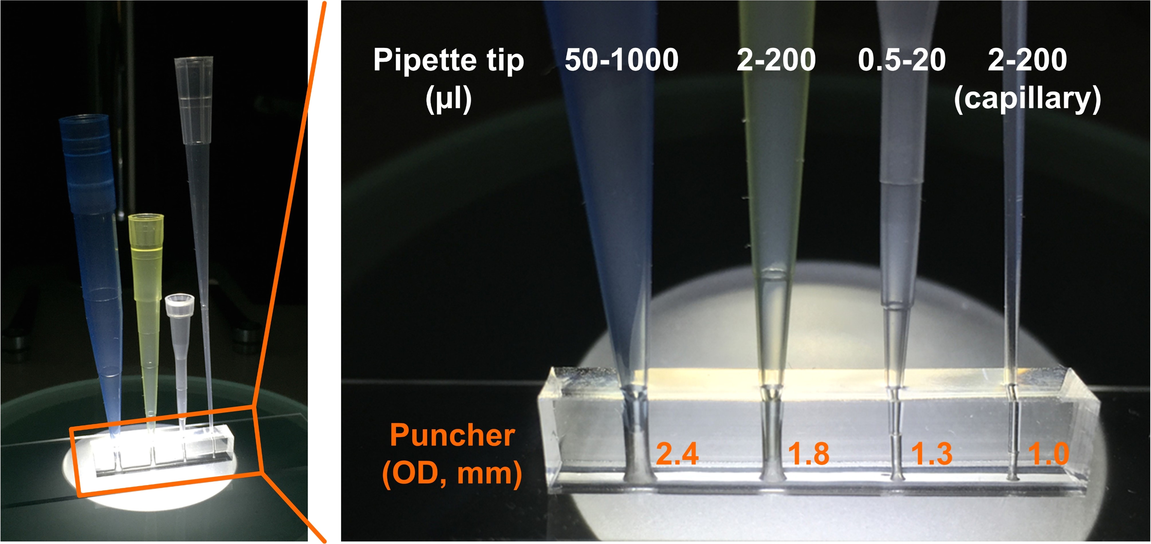 fig 1 direct connection of pipette tips on a pdms device
