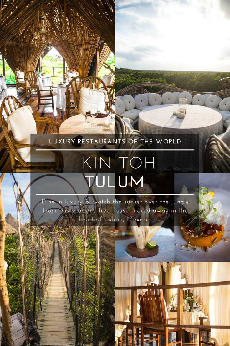 kin toh tree house nest restaurant at azulik resort tulum mexico view of jungle best