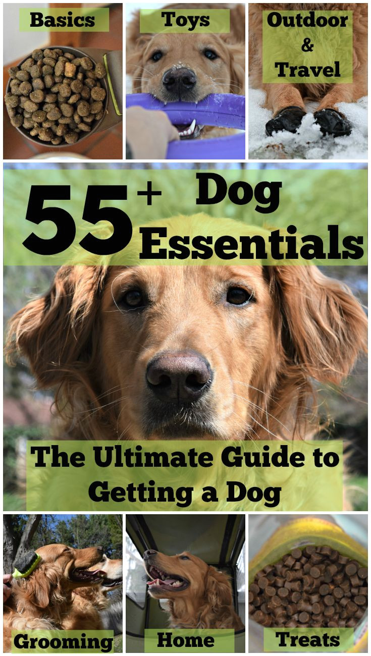 55 dog essentials the ultimate guide to getting a dog