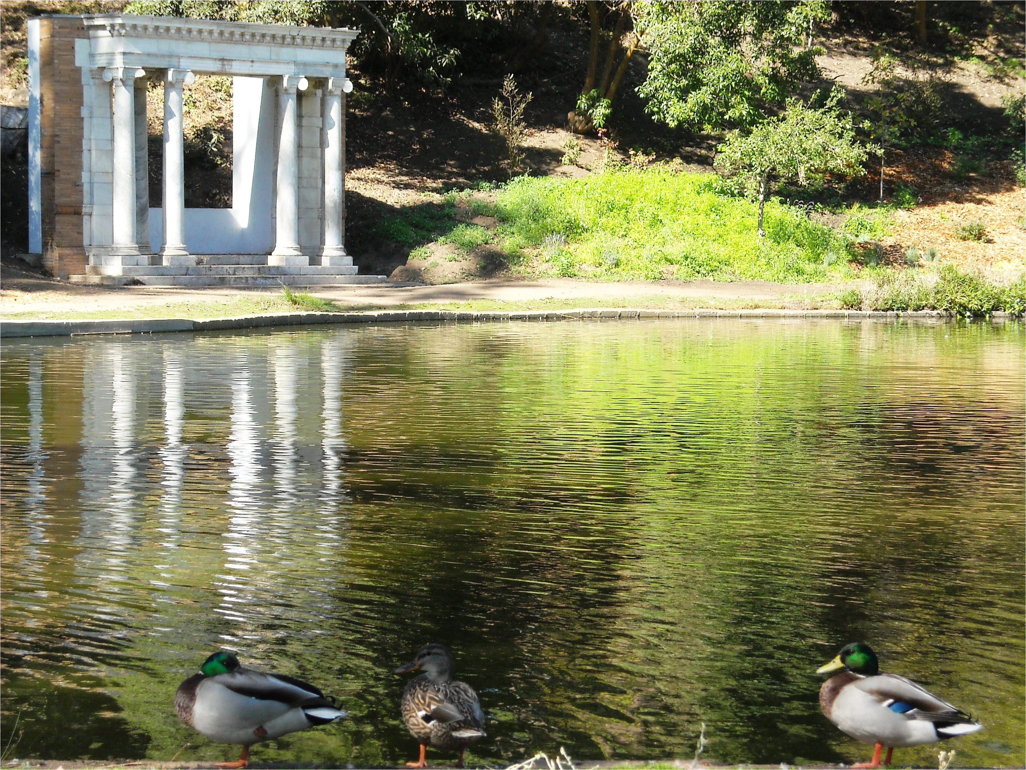 golden gate park 2c san francisco 2c ca jpg