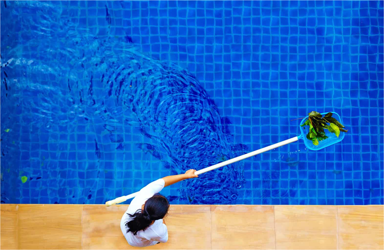 how to get leaves out of your pool