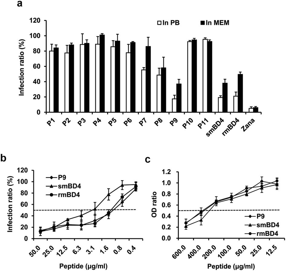 a novel peptide with potent and broad spectrum antiviral activities against multiple respiratory viruses scientific reports
