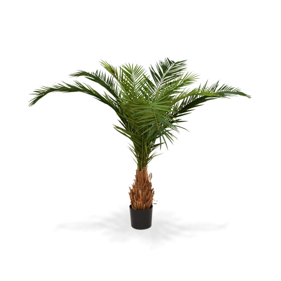 artificial canary phoenix deluxe palm tree 210 cm
