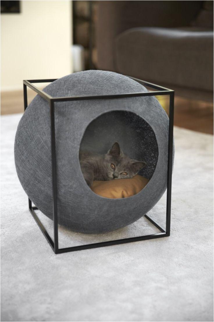 los accesorios para gatos no tienen por que estar rea idos con el disea o