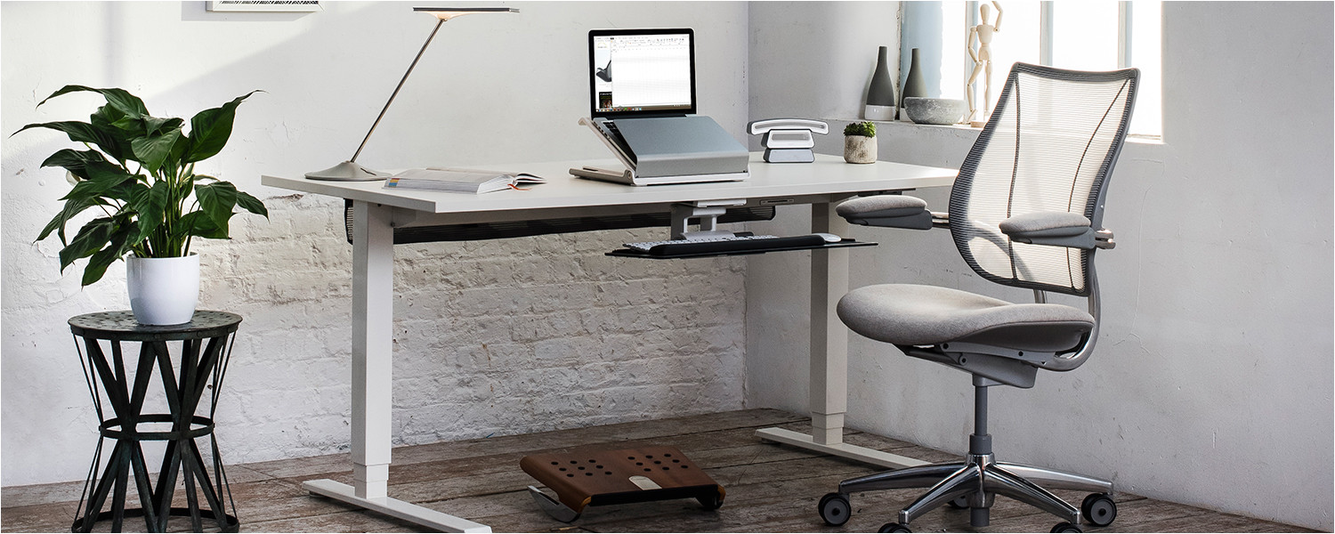 create a happier healthier work environment with office plants