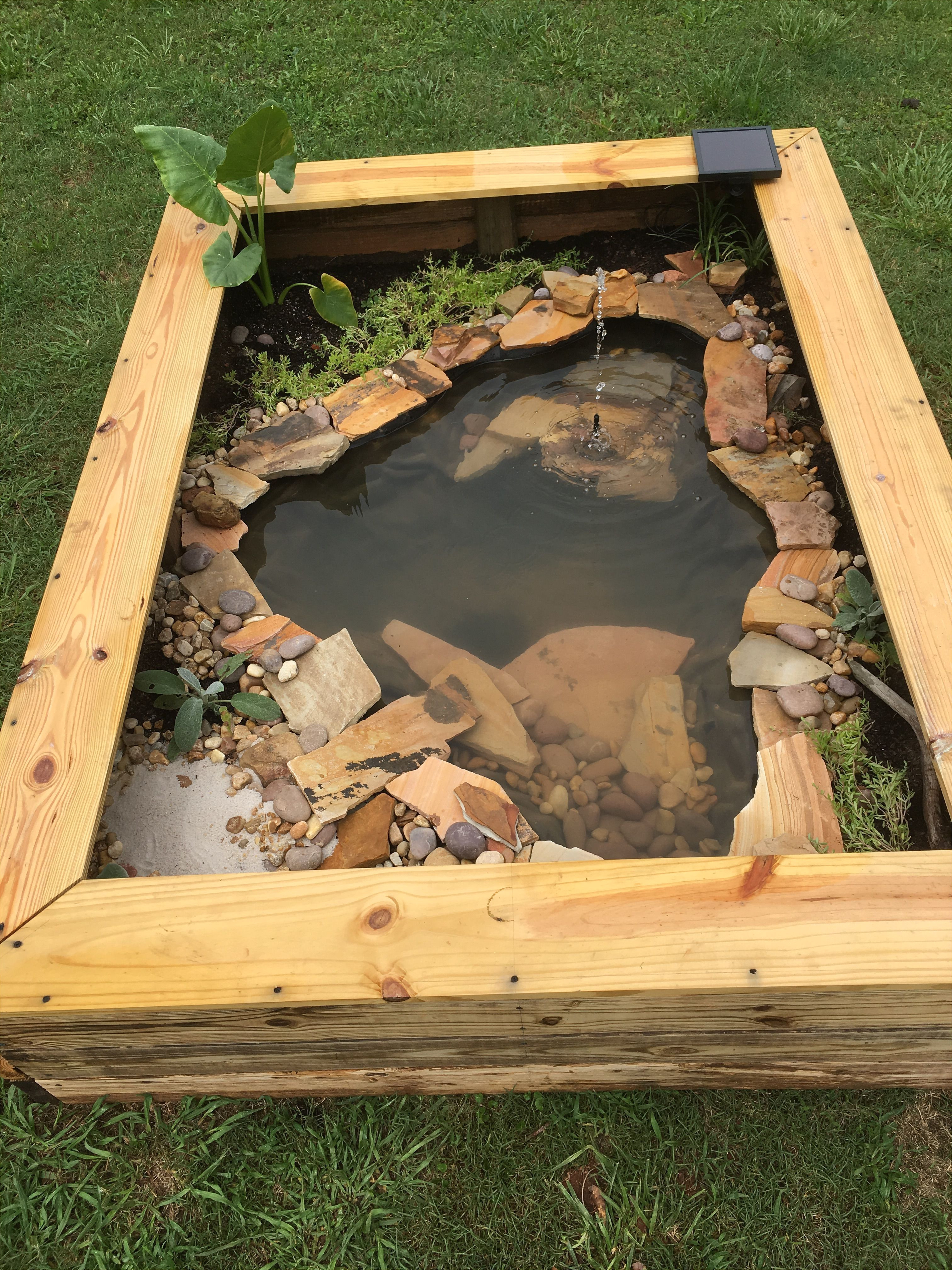 Above Ground Turtle Pond Our New Diy Above Ground Pond for Bella the Turtle Ponds