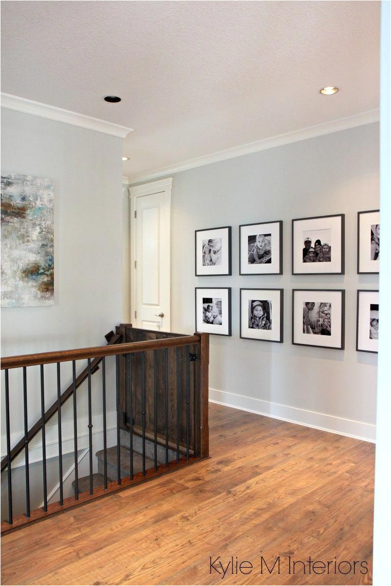 benjamin moore gray owl a best gray paint colour for dark