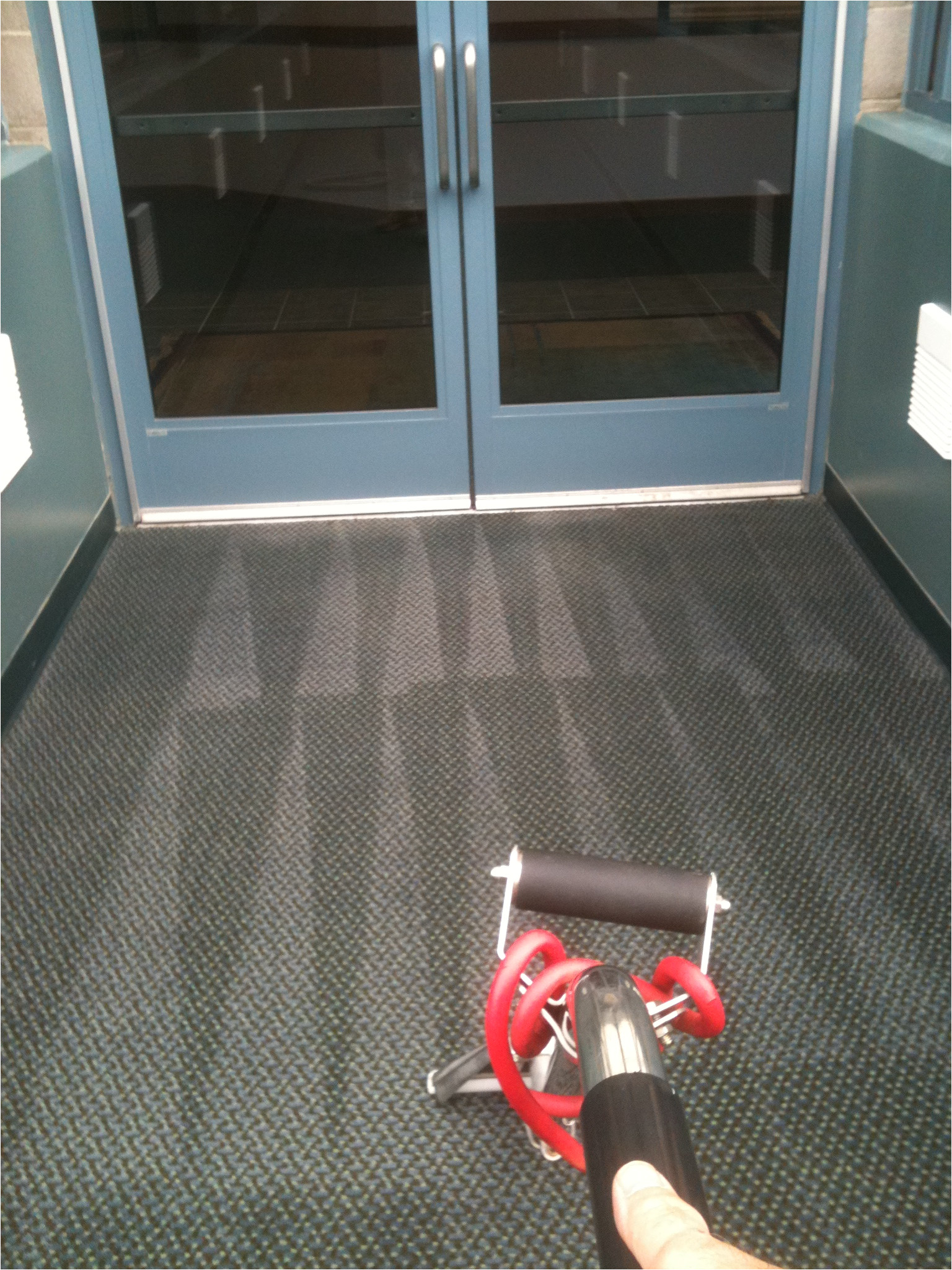img 0214 carpet cleaning grand rapids