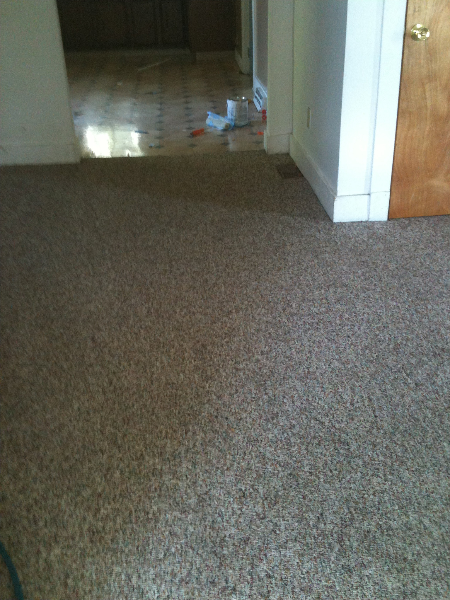 img 0294 carpet cleaning grand rapids
