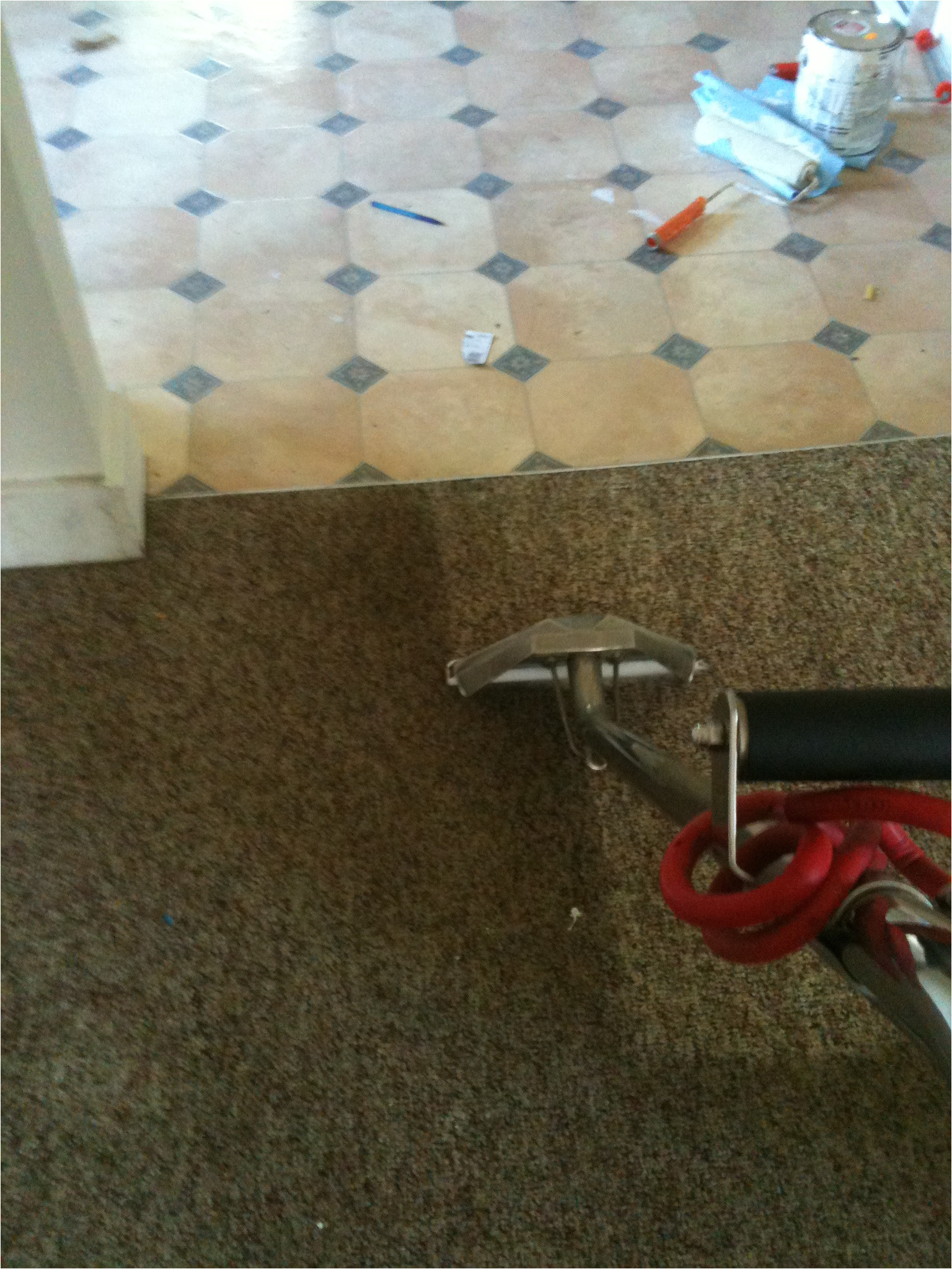 img 0284 carpet cleaning grand rapids
