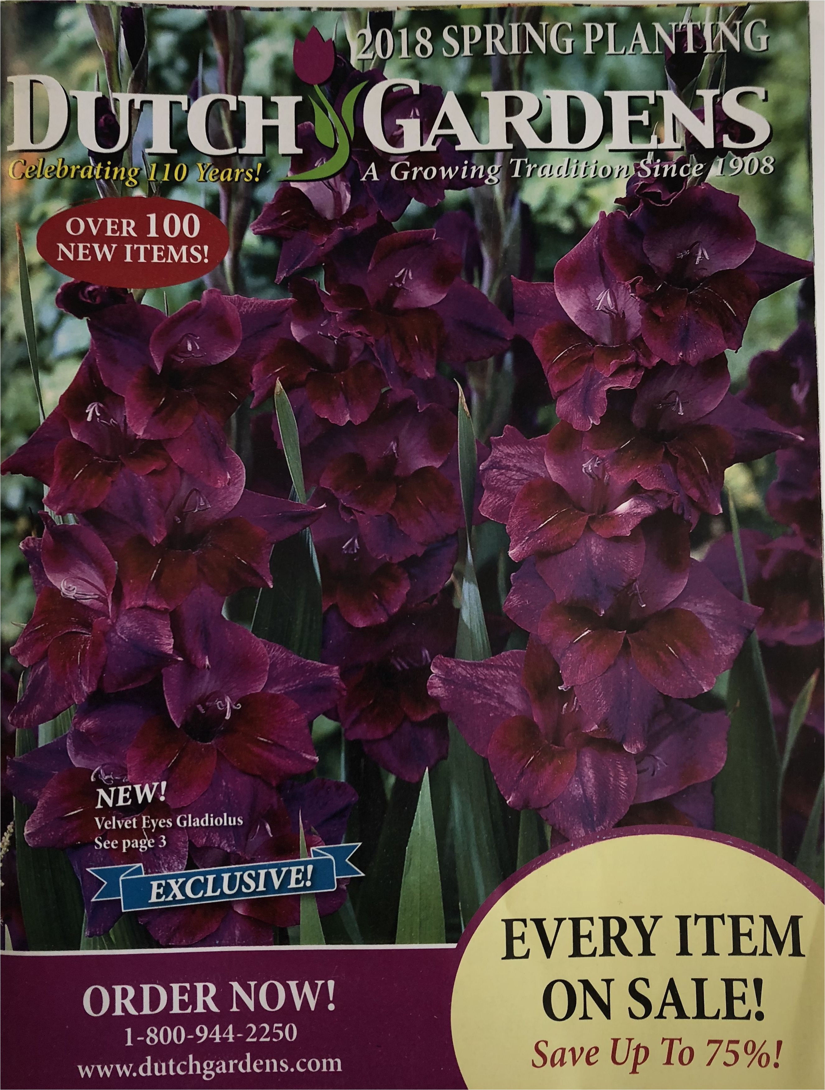 dutch gardens seed catalogs 5a8cadbdc5542e0037f62ddd jpg