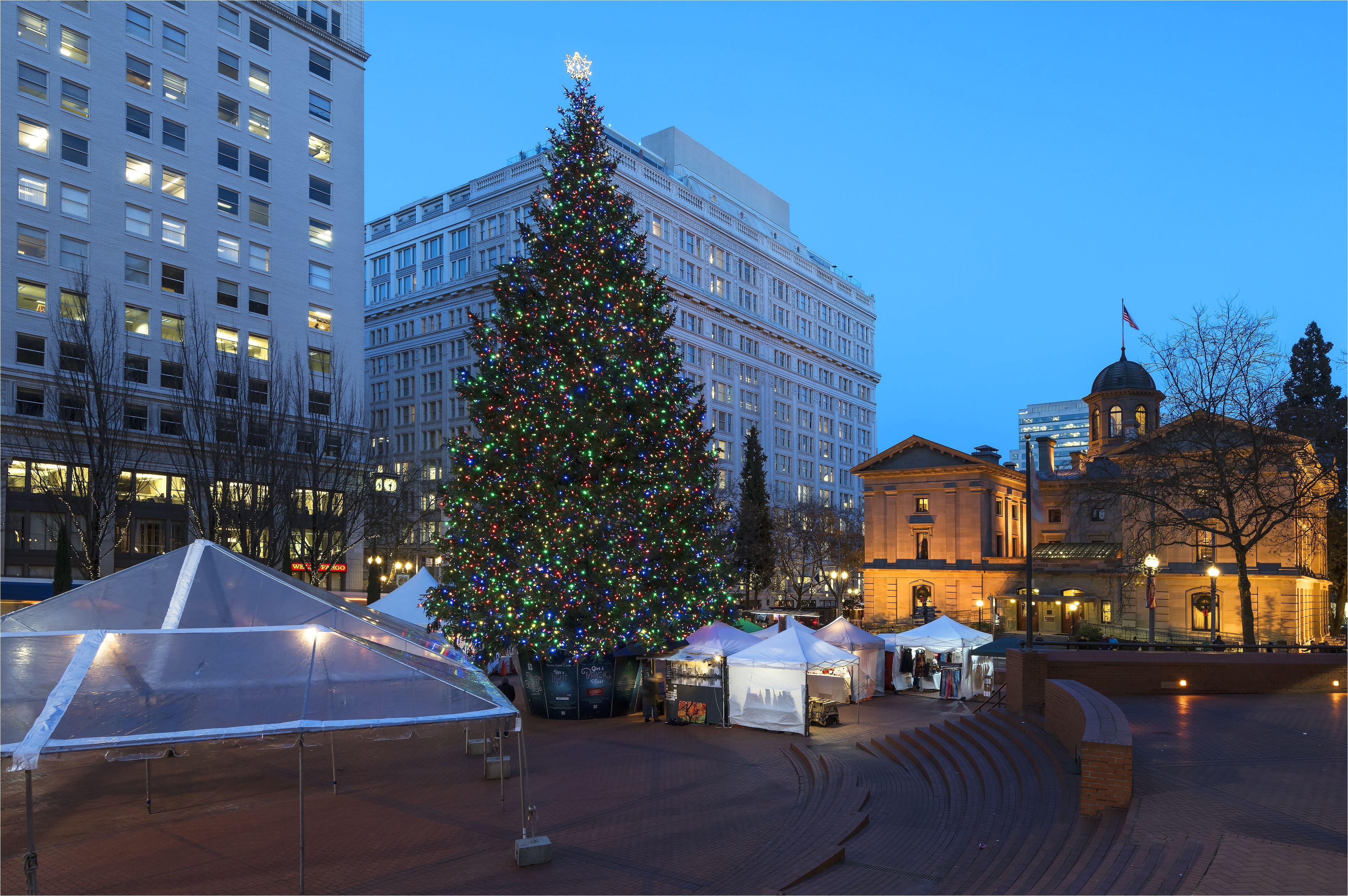 christmas tree in portland or 628418092 5ab9521b8023b90036b5de18 jpg