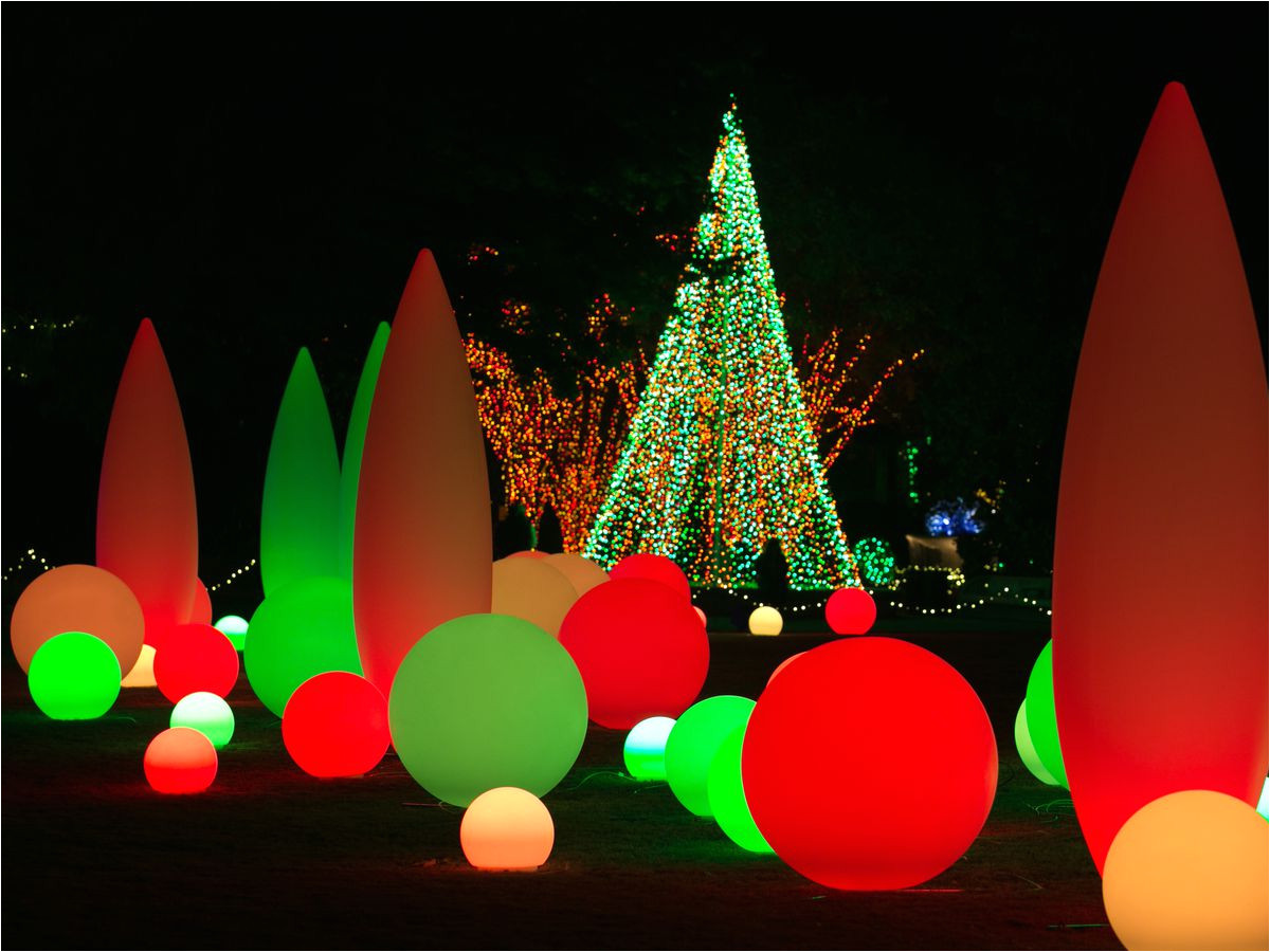 garden lights holiday nights