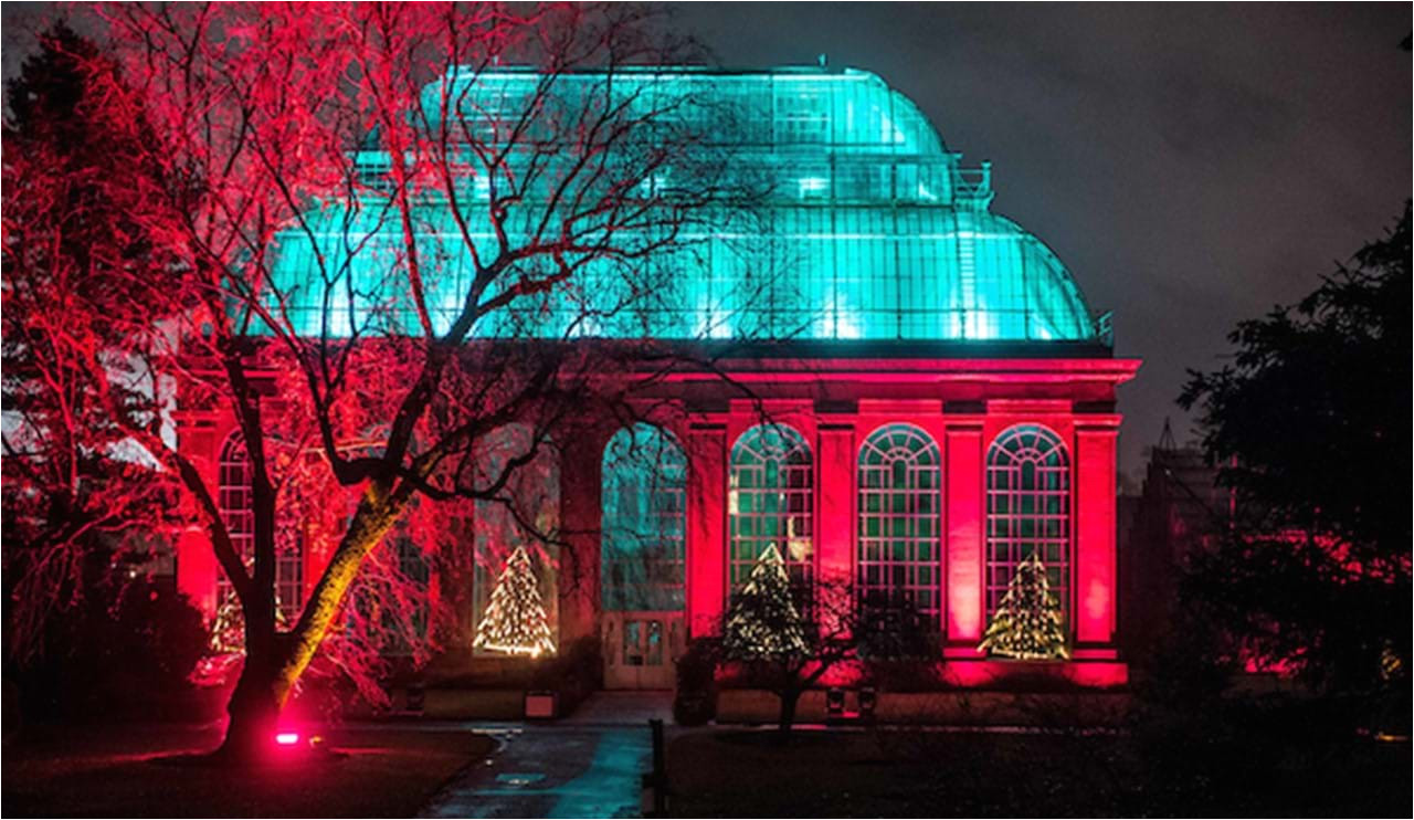 glasshouse show cathedral of light