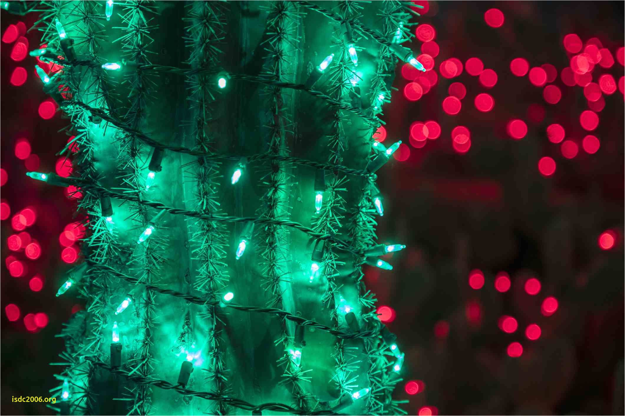 atlanta botanical garden christmaslightincactus 5a802fc3ff1b f1cbeb