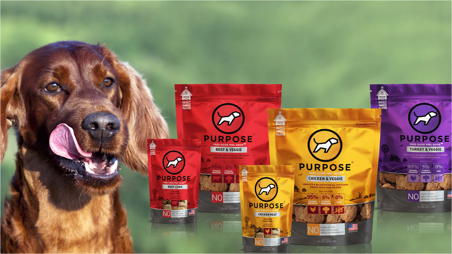 the values of animal lovers we offer ethically sourced freeze dried food for dogs treats for dogs and