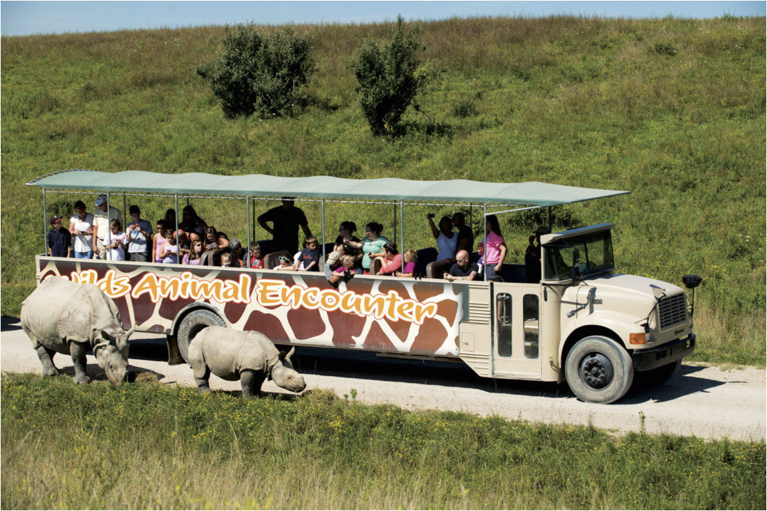 owned by jack hanna the wilds conservation center is located about an hour and a half outside of columbus but it s certainly worth the trip to let your